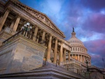 Congress and the American Political System I