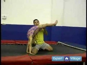Gymnastics for Beginners