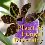 Biology 1B: General Biology (Fall 2010)
