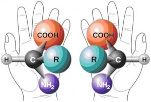 Chem 51B: Organic Chemistry II