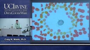 Immunology with Hematology