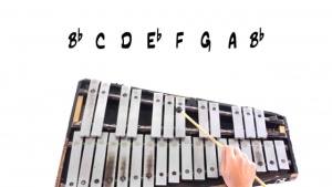 Quick Introduction to Keyboard Percussion