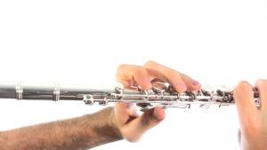 Quick Introduction to the Flute