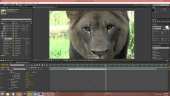 Introduction to Adobe After Effects by TheNewBoston