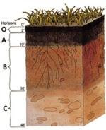 Advanced Soil Mechanics