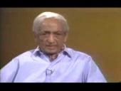 J. Krishnamurti Eleventh Conversation with Dr Allen W. Anderson (1974)