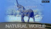 The Elephant, The Emperor and The Butterfly Tree (2003)