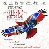 Lynyrd Skynyr: Freebird... The Movie (1996)