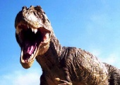 T.Rex - Warrior or Wimp? (2004)