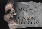 The Mystery of the Cocaine Mummies (1996)