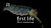 David Attenborough's First Life (2010)
