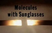 Molecules with Sunglasses: the Buckminsterfullerene (1992)
