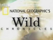 Wild Chronicles, with Boyd Matson (2005)