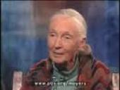 Bill Moyers Journal: Jane Goodall (2009)