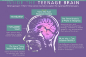Inside the Teenage Brain (2002)
