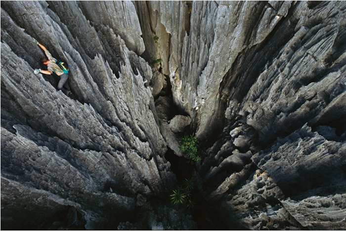 Bemaraha National Park, Madagascar - Rocks turned to razors, eroded limestone pinnacles rise 300-plus feet (91.4 meters) from the forest floor of this park—challenging researchers who study the island's rare and endangered species. (Olivier Grunewald)  Source: National Geographic