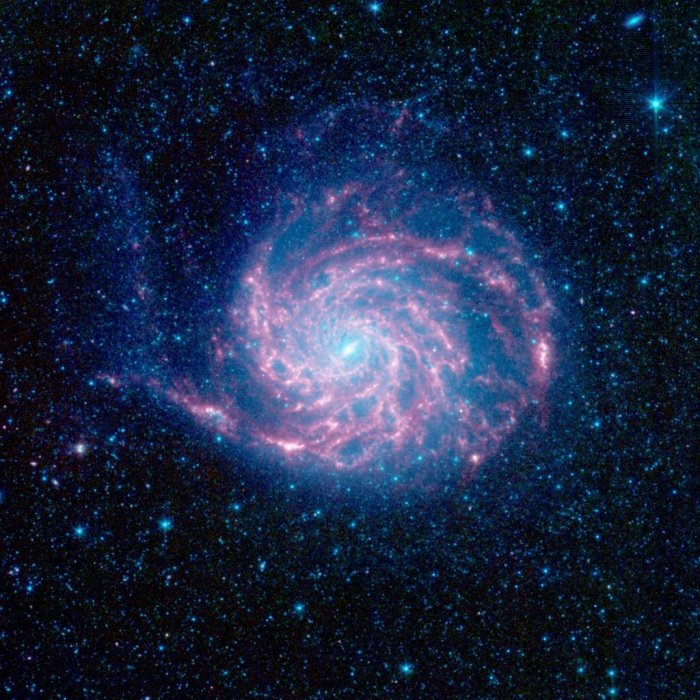 Spitzer's M101 Credit: NASA, JPL-Caltech, K. Gordon (STScI) et al. Astronomy Picture of the Day - 2009 December 30  Explanation: Big, beautiful spiral galaxy M101 is one of the last entries in Charles Messier's famous catalog, but definitely not one of the least. About 170,000 light-years across, this galaxy is enormous, almost twice the size of our own Milky Way Galaxy. M101 was also one of the original spiral nebulae observed by Lord Rosse's large 19th century telescope, the Leviathan of Parsontown. Recorded at infrared wavelengths by the Spitzer Space telescope, this 21st century view shows starlight in blue hues while the galaxy's dust clouds are in red. Examining the dust features in the outer rim of the galaxy, astronomers have found that organic molecules present throughout the rest of M101 are lacking. The organic molecules tracked by Spitzer's instruments are called polycyclic aromatic hydrocarbons (PAHs). Of course, PAHs are common components of dust in the Milky Way and on planet Earth are found in soot. PAHs are likely destroyed near the outer edges of M101 by energetic radiation in intense star forming regions. Also known as the Pinwheel Galaxy, M101 lies within the boundaries of the northern constellation Ursa Major, about 25 million light-years away.