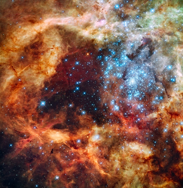 Star Cluster R136 Bursts Out Astronomy Picture of the Day - 2009 December 21 Credit: NASA, ESA, & F. Paresce (INAF-IASF), R. O'Connell (U. Virginia), & the HST WFC3 Science Oversight Committee  Explanation: In the center of star-forming region 30 Doradus lies a huge cluster of the largest, hottest, most massive stars known. These stars, known collectively as star cluster R136, were captured above in visible light by the newly installed Wide Field Camera peering though the recently refurbished Hubble Space Telescope. Gas and dust clouds in 30 Doradus, also known as the Tarantula Nebula, have been sculpted into elongated shapes by powerful winds and ultraviolet radiation from these hot cluster stars. The 30 Doradus Nebula lies within a neighboring galaxy known as the Large Magellanic Cloud and is located a mere 170,000 light-years away.