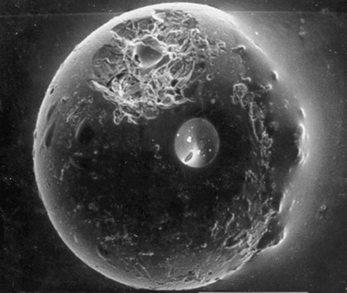 A Spherule from the Earth's Moon Credit: Timothy Culler (UCB) et al., Apollo 11 Crew, NASA Astronomy Picture of the Day - 2010 January 10  Explanation: How did this spherule come to be on the Moon? When a meteorite strikes the Moon, the energy of the impact melts some of the splattering rock, a fraction of which might cool into tiny glass beads. Many of these glass beads were present in lunar soil samples returned to Earth by the Apollo missions. Pictured above is one such glass spherule that measures only a quarter of a millimeter across. This spherule is particularly interesting because it has been victim to an even smaller impact. A miniature crater is visible on the upper left, surrounded by a fragmented area caused by the shockwaves of the small impact. By dating many of these impacts, astronomers can estimate the history of cratering on our Moon.