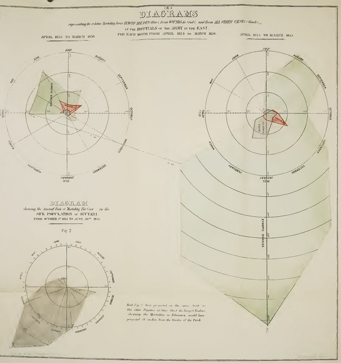 Florence Nightingale was a master in visualising statistics - see how she did it. Florence Nightingale's 'coxcomb' diagram on mortality in the army. Click on the image to get a bigger image of her first version - her
