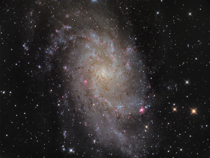 M33: Triangulum Galaxy  Credit:Manfred Konrad Astronomy Picture of the Day -2010 December 3  Explanation: The small, northern constellation Triangulum harbors this magnificent face-on spiral galaxy, M33. Its popular names include the Pinwheel Galaxy or just the Triangulum Galaxy. M33 is over 50,000 light-years in diameter, third largest in the Local Group of galaxies after the Andromeda Galaxy (M31), and our own Milky Way. About 3 million light-years from the Milky Way, M33 is itself thought to be a satellite of the Andromeda Galaxy and astronomers in these two galaxies would likely have spectacular views of each other's grand spiral star systems. As for the view from planet Earth, this sharp, detailed image nicely shows off M33's blue star clusters and pinkish star forming regions that trace the galaxy's loosely wound spiral arms. In fact, the cavernous NGC 604 is the brightest star forming region, seen here at about the 4 o'clock position from the galaxy center. Like M31, M33's population of well-measured variable stars have helped make this nearby spiral a cosmic yardstick for establishing the distance scale of the Universe.