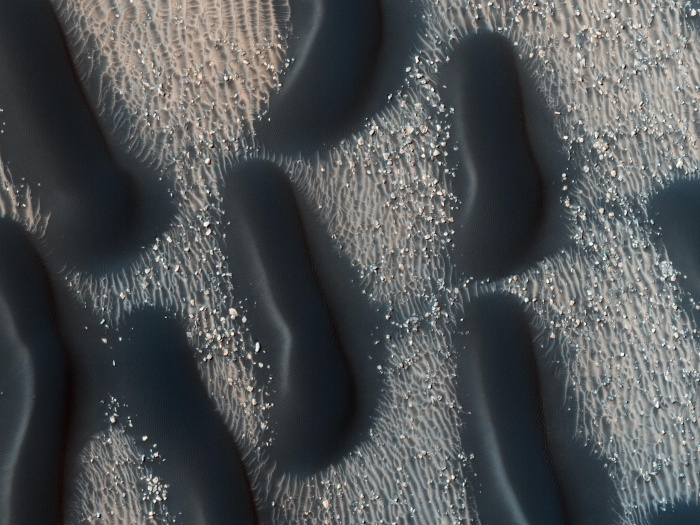 A Dark Dune Field in Proctor Crater on Mars  Credit:HiRISE,MRO,LPL (U. Arizona),NASA Astronomy Picture of the Day -2010 November 22  Explanation: Was this image taken with a telescope or a microscope? Perhaps this clue will help: if the dark forms were bacteria, they would each span over football field across. What is actually being seen are large sand dunes on the floor of Proctor Crater on Mars. The above picture was taken by HiRISE camera on board the Mars Reconnaissance Orbiter (MRO), a robot spacecraft currently in orbit around Mars. The dark rippled dunes likely formed more recently than the lighter rock forms they appear to cover, and are thought to slowly shift in response to pervasive winds. The dunes arise from a complex relationship between the sandy surface and high winds on Mars. Similar dunes were first seen in Proctor Crater by Mariner 9 more than 35 years ago.
