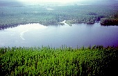 Lake Cheko, in the Siberian region of Tunguska