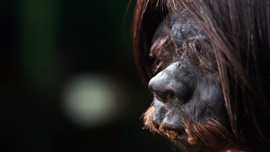 Terrifying legends from the Amazon tell of Indian headshrinkers who would shrink an enemy's head to render the vengeful soul powerless. Now, NGC has exclusive U.S. access to 45-year-old archive footage captured by explorer Edmundo Bielawski, purportedly the only known footage that shows the process of an actual - recently deceased - human head being shrunk. Author and explorer Piers Gibbon heads deep into the Amazon jungle in an attempt to trace Bielawski's 1960s journey, rediscover the exact location where this scene was filmed and reconnect with the tribe today, in Search for the Amazon Headshrinkers.  Read more: http://channel.nationalgeographic.com/series/expedition-week/4380/Overview#ixzz0Wr7aXXdG