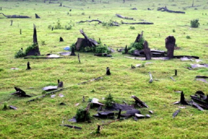 Saturday, 13 May 2006, 01:29 GMT 02:29 UK