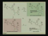 Enzyme Mechanisms II