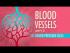 Blood Vessels, Part 2