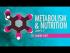 Metabolism & Nutrition, Part 1
