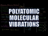 Polyatomic Molecular Vibrations