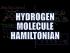 Hydrogen Molecule Hamiltonian