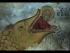 02/03. Historical & Mythological Context