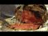 Salt Crusted Prime Rib Recipe (Episode 274)