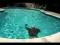 Basic Strokes for Synchronized Swimming
