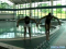 Full Arm Movement for the Breaststroke