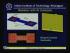MEMS Pressure and Flow Sensor