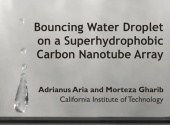Water Droplet Bouncing on a Superhydrophobic Carbon Nanotube Array (2010)