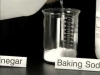 Formation of Salts