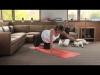 Prenatal Back Relief